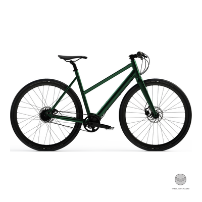 Desiknio - PINION - URBAN Commuter e-Bike - D'grün